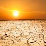 Klimatická změna. Jak můžeme zabránit další globální krizi?