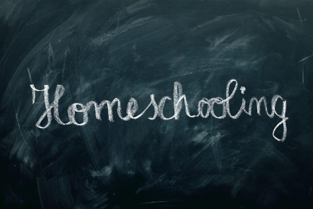 Domácí vzdělávání – strašák, nebo opravdová pomoc?